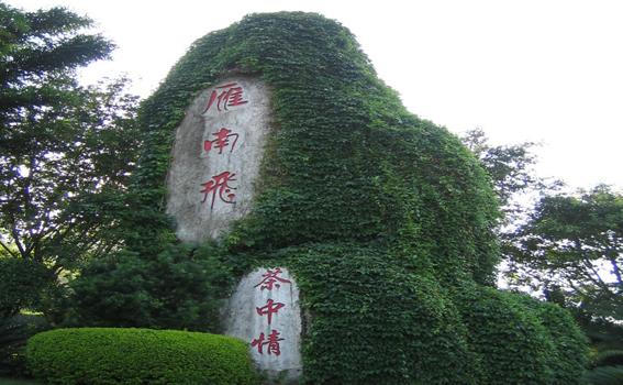 梅州到深圳地图